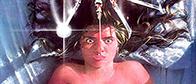 Terror på Elm Street - 1984, Film, Skräckfilm, Elm Street
